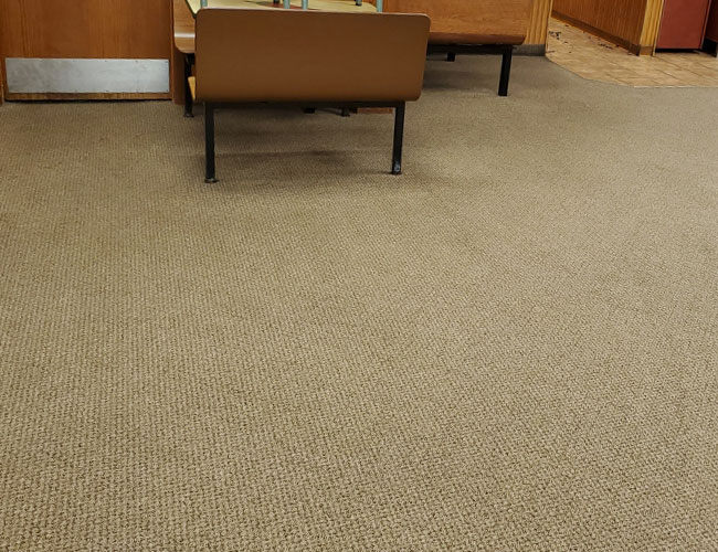 Carpet Cleaning - Results
